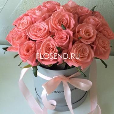 25 кремовых роз в коробке